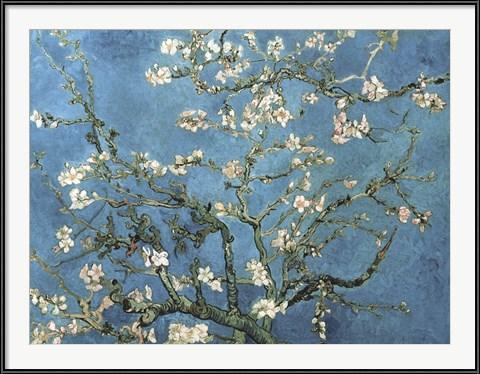 Almond Blossom - Vincent Van Gogh (1988)