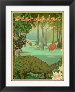 Everglades National Park Print