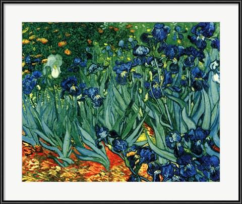 Irises in the Garden - Vincent Van Gogh