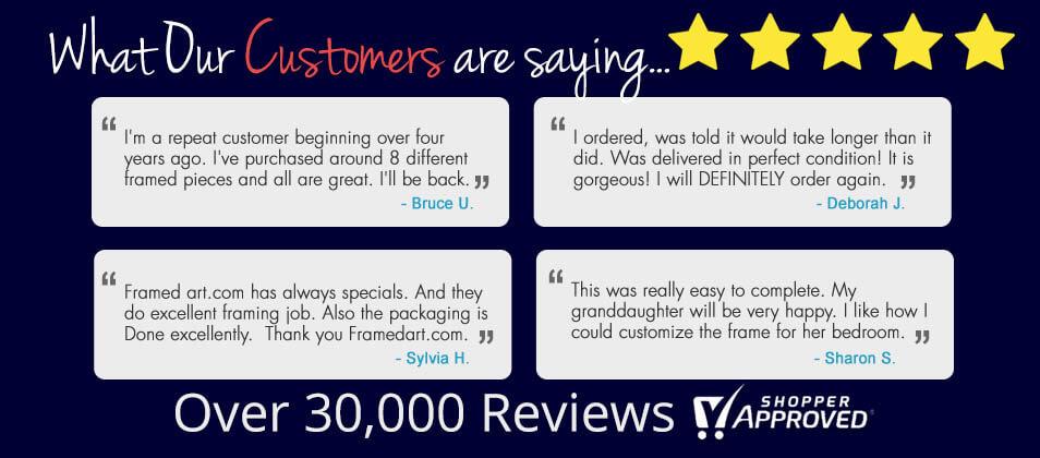 framedart reviews