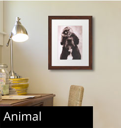 Framed Animal Art