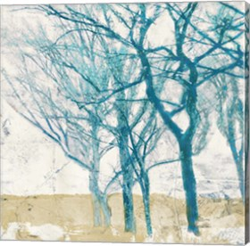 Framed Turquoise Trees II