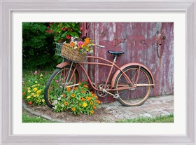 Framed Old Bicycle With Flower Basket, Marion County, Illinois