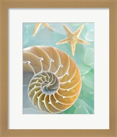 Framed Seaglass 2