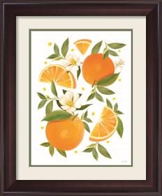 Framed Citrus Orange Botanical