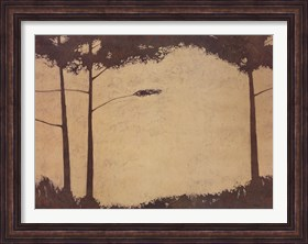Framed Grove
