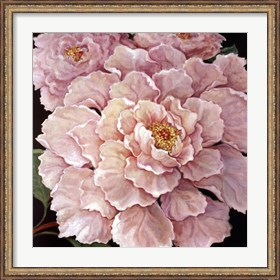Framed Fuschia Peonies