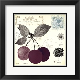 Framed Cherry Notes