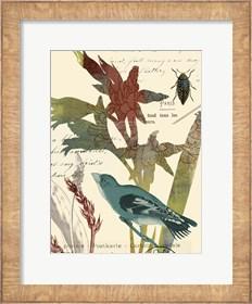 Framed Exotic Blossom II