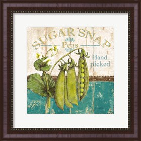 Framed Sugar Snap