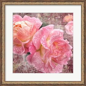 Framed Fresh Rose III