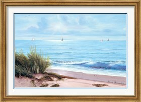 Framed Sandpiper Beach
