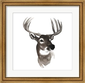 Framed Western Animal Study VI