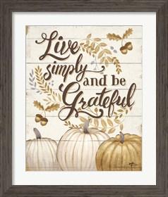 Framed Grateful Season I