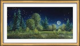 Framed Fireflies