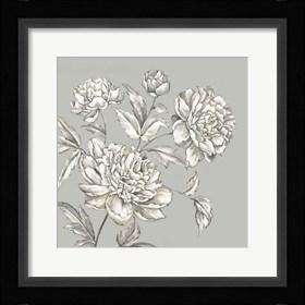 Framed Botanical I