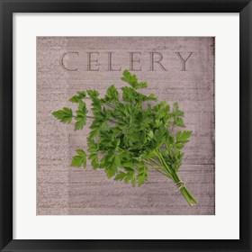 Framed Classic Herbs Celery