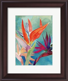Framed Vivid Birds of Paradise I