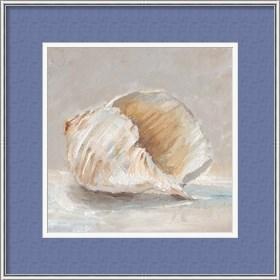 Framed Impressionist Shell Study IV