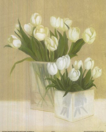 Framed White Tulips In Square Vase Print