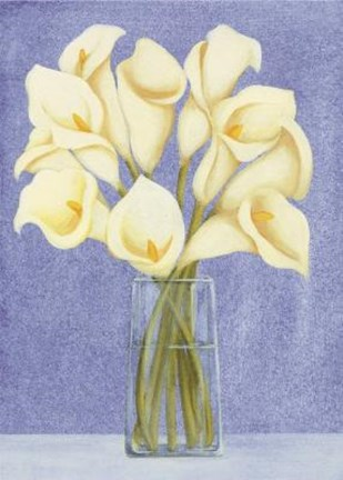 Framed White Cala Lilies In Vase Print