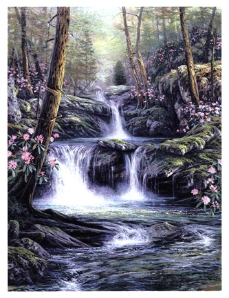 Framed Blue Ridge Falls Print