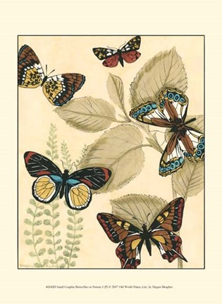 Framed Sm. Graphic Butterflies I (P) Print
