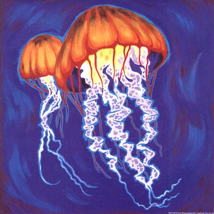 Framed Jelly Fish Print