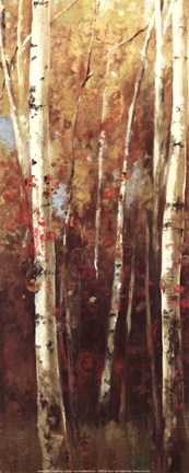 Framed Birch Forest II - Mini Print