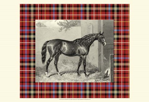 Framed Equestrian Plaid III Print
