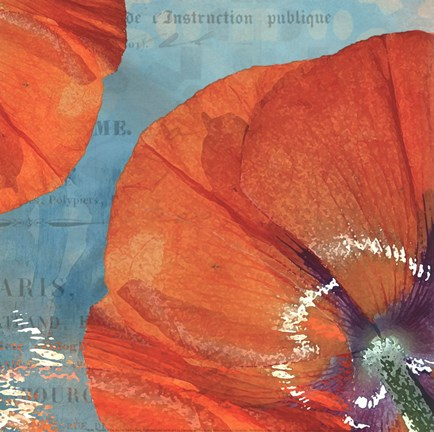 Framed Poppies in the Sky I Print