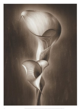 Framed Calla Duo Print