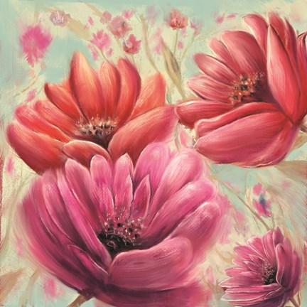 Framed Pink Poppy Bloom Print