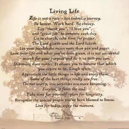 Framed Living Life   Tree Silhouette Print