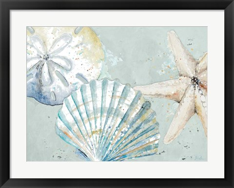 Framed Beach Shells Print