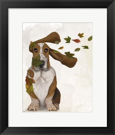 Framed Basset Hound Windswept and Interesting Print