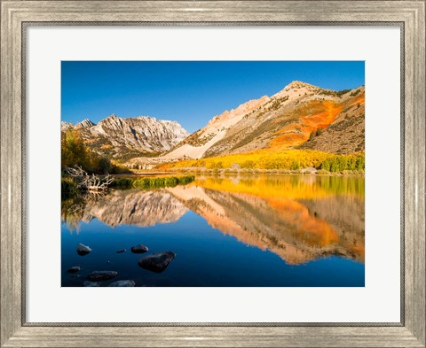 Framed California, Eastern Sierra, Fall Color Reflected In North Lake Print