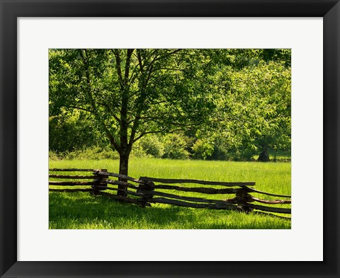 Framed Old Wooden Fence In Cades Cove Print