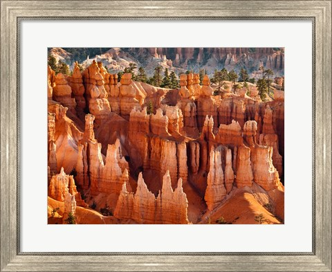 Framed Morning Light On The Hoodoos Of Bryce Canyon National Park Print