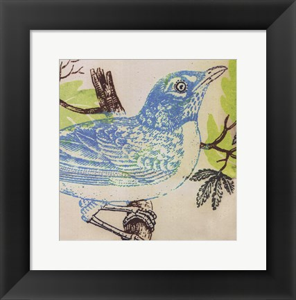 Framed Bluebird Print