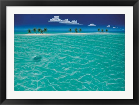Framed Turtle Crossing Print