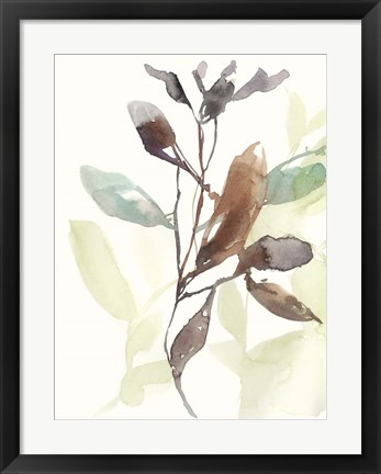 Framed Rusty Sienna Leaves I Print