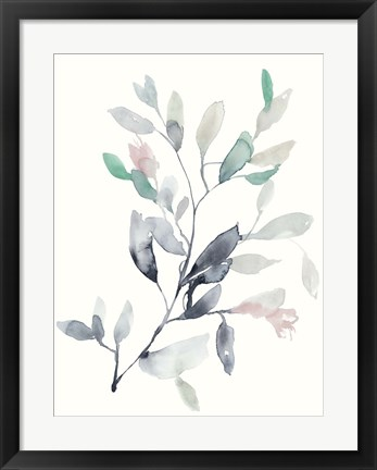 Framed Water Branches II Print