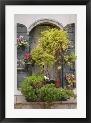 Framed Italian Window Flowers IV Print