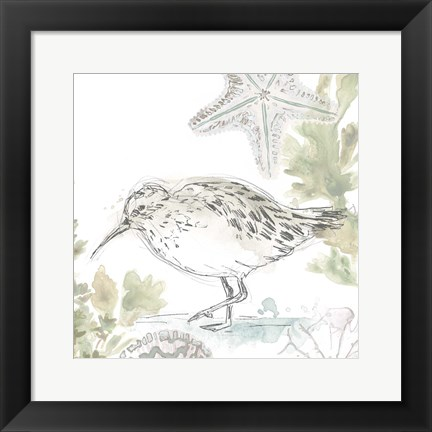 Framed Seaside Sandpipers II Print