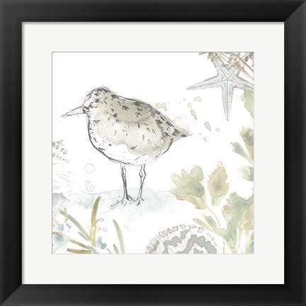 Framed Seaside Sandpipers IV Print