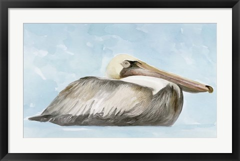 Framed Soft Brown Pelican I Print