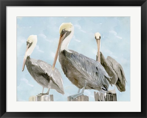 Framed Soft Brown Pelican III Print