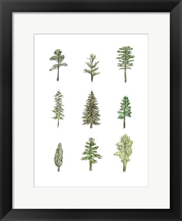 Framed Collected Pines I Print
