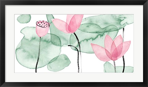 Framed Lotus in Nature III Print